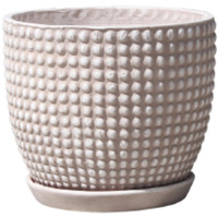 Dotted Egg Pot