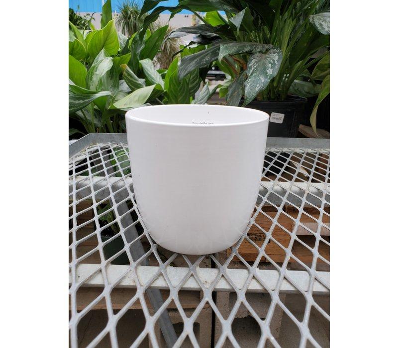 Dolomite Pot White