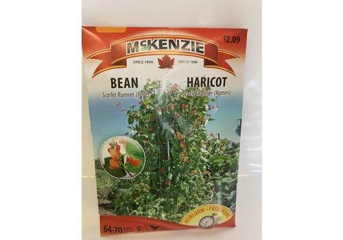 McKenzie Bean Flowering Vine Scarlet Ru