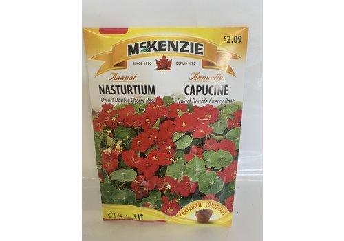 McKenzie Nasturtium Dwf Dbl Cherry Rose