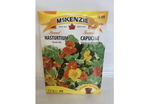 McKenzie Nasturtium Alaska Mix