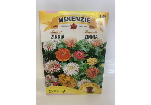 McKenzie Zinnia Candy Cane