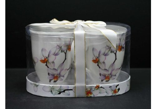 Orchid New Bone China Mug Set of 2