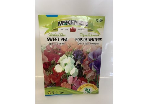 McKenzie Sweet Pea Spencer Giant Mix