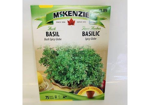 McKenzie Herb Basil Bush Spicy Globe