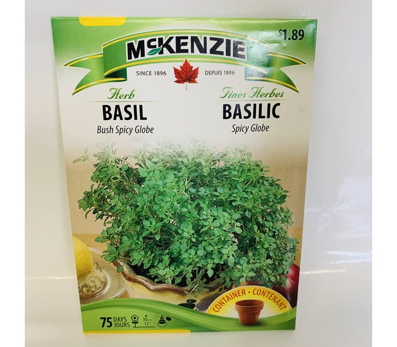 Herb Basil Bush Spicy Globe