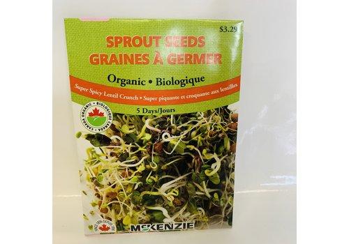 McKenzie Sprouts Super Spicy Lentil Organic