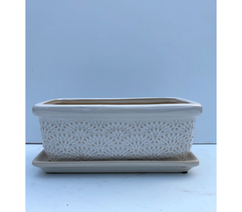 Fanfare Window Box With Saucer