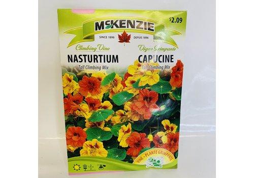 McKenzie Nasturtium Tall Climbing Mix