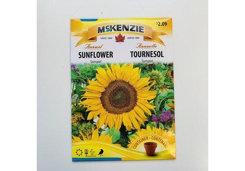 McKenzie Sunflower Sunspot