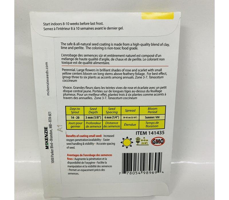 Chrysanthemum Robinson Mix SE