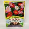 McKenzie Chrysanthemum Robinson Mix SE