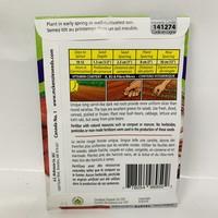 Beet Cylindra Organic