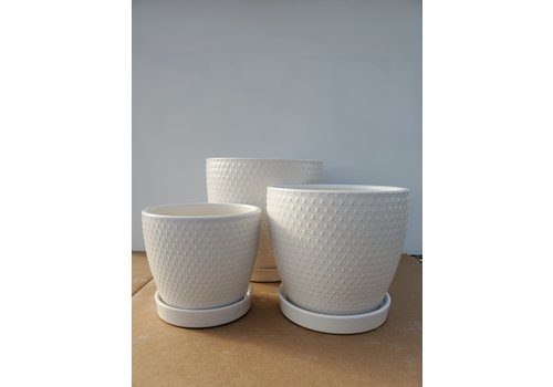Dutch Growers Ceramic Pot With Saucer White Diamond