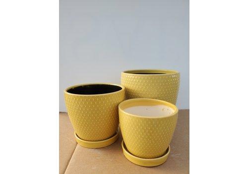Dutch Growers Ceramic Pot With Saucer Yellow Diamond