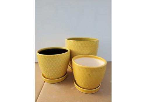 Dutch Growers Ceramic Pot With Saucer Yellow Prism