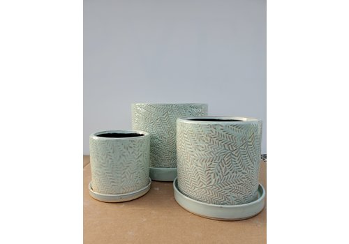 Dutch Growers Ceramic Pot With Saucer Green Fern