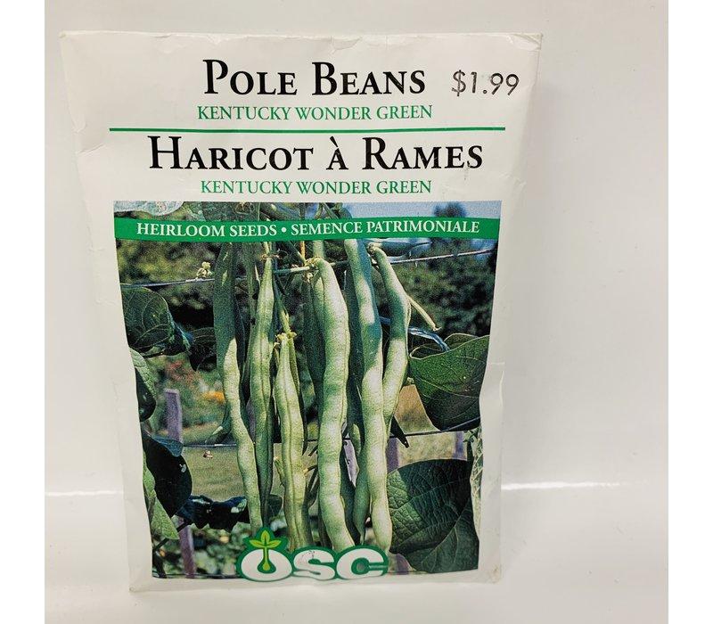 Beans Pole Kent. Wonder Green