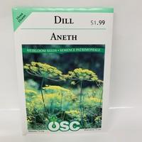 Herbs Dill