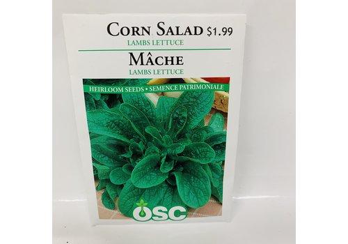 OSC Corn Salad