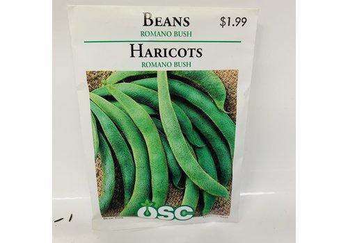 OSC Beans Romano 14 Bush