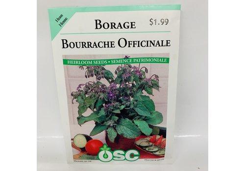 OSC Herbs Borage