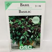 Herbs Basil Thai