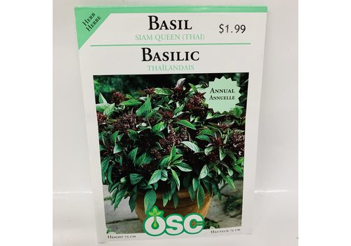 OSC Herbs Basil Thai