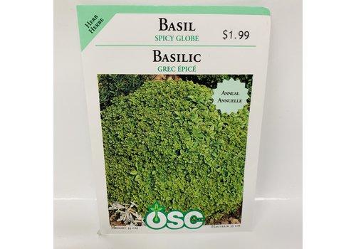OSC Herbs Basil Spicy Globe