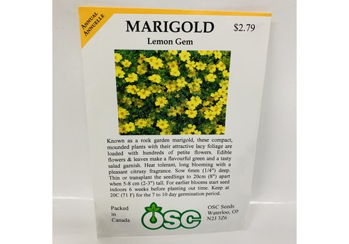 OSC Marigold Lemon Gem