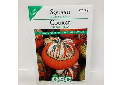 OSC Squash Turk's Turban