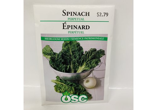 OSC Spinach  Perpetual