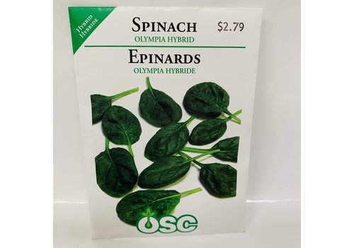 OSC Spinach  Olympia