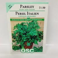 Herbs Parsley Italian Plain