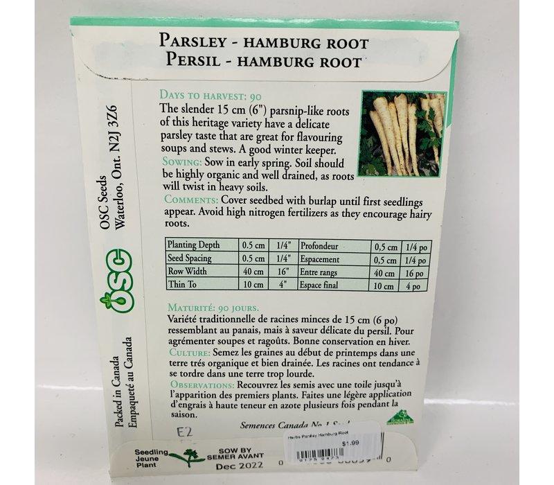 Herbs Parsley Hamburg Root
