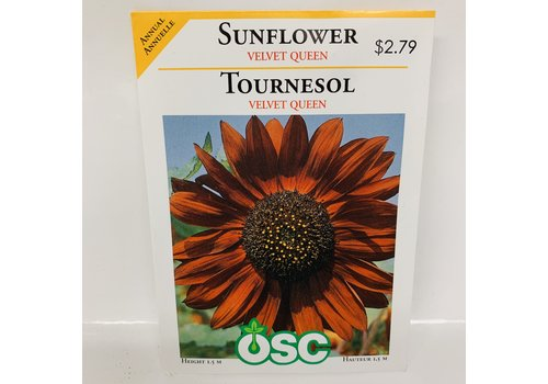 OSC Sunflowers Velvet Queen