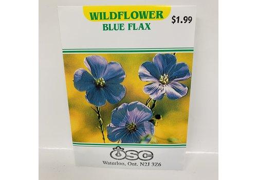 OSC Linum Perenne Blue Flax