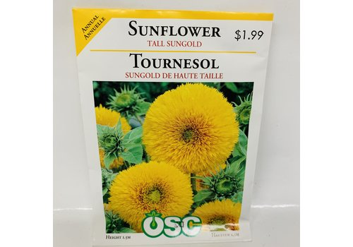 OSC Sunflowers Tall Sungold
