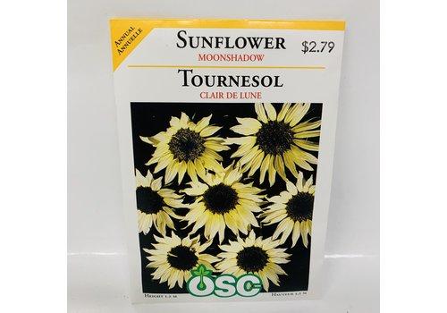OSC Sunflowers Moonshadow