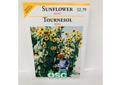 OSC Sunflowers Kong