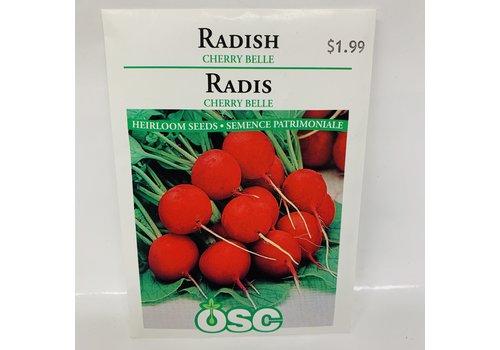 OSC Radish Cherry Belle