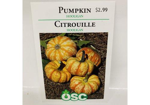 OSC Pumpkin Hooligan