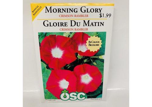 OSC Morning Glory Crimsom Rambler