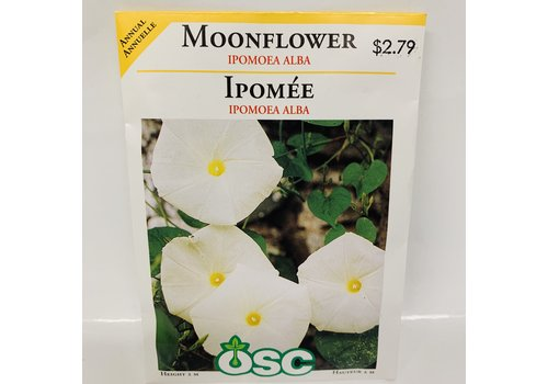 OSC Moonflower Impomea Alba