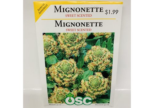 OSC Mignonette Sweet Scented