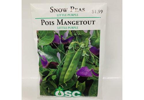 OSC Peas Little Snow Pea Purple