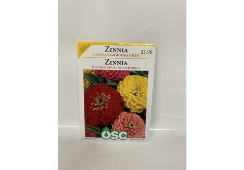 OSC Zinnia California Giant