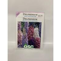 Delphinium Magic Fountians