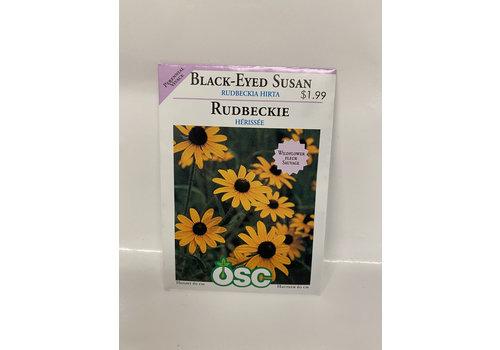 OSC Rudbeckia Black Eyed Susan