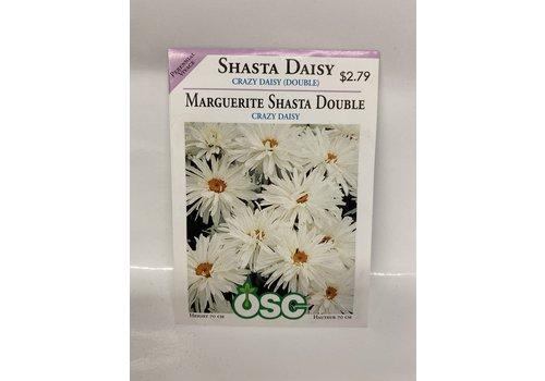OSC Daisy Crazy Daisy Double